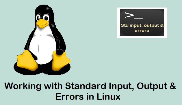 Working-with-Standard-Input-Output-Errors-Linux