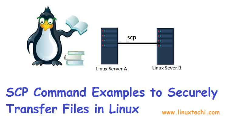 scp-command-examples-linux