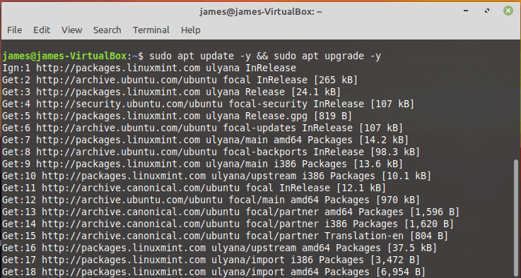 apt-upgrade-Linuxmint19-before-upgrade