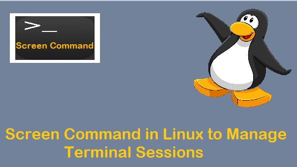 Screen-Command-Session-Linux